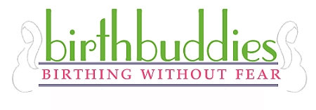 Birth Buddies Logo